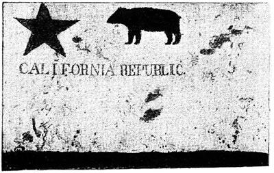 BearFlag2