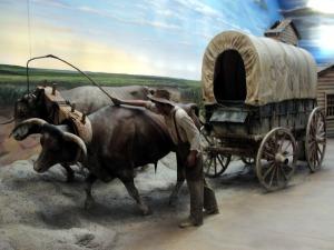 3wagon&oxen
