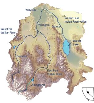 walker-river