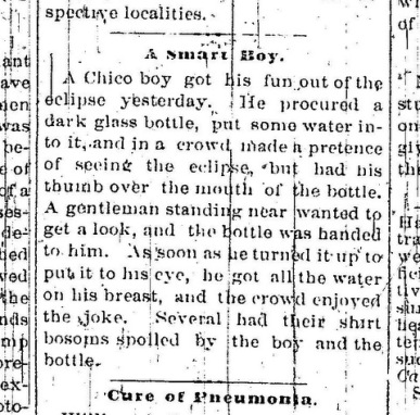Issue Date JANUARY 02 1889 page 3