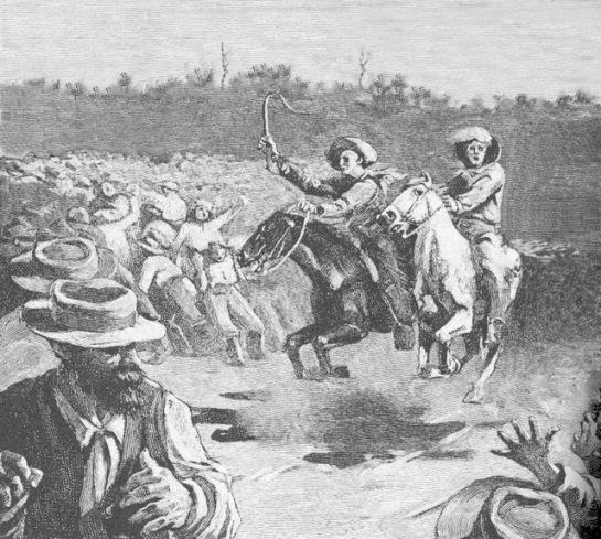 horse race-e
